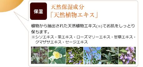 天然保湿成分「天然植物エキス」
