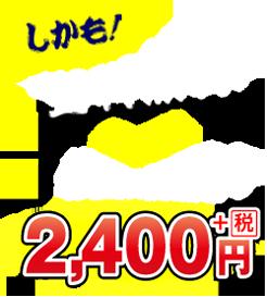 送料無料でお値段据え置き!2,520円