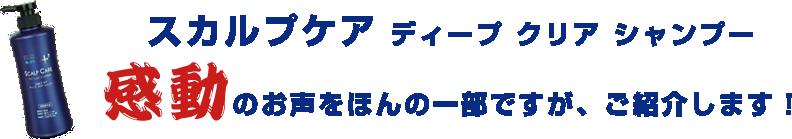 スカルプケア ディープ クリア シャンプー 感動のお声をほんの一部ですがご紹介します!